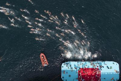 Takmičenje organizira Turski olimpijski komitet