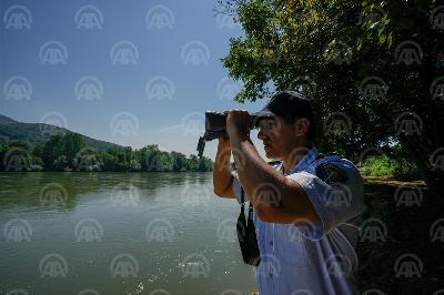 GRANIČNA POLICIJA: ALBANAC POKUŠAO PROKRIJUMČARITI 17 MIGRANATA IZ BIH U HRVATSKU