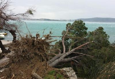 Posljedice orkanskog vjetra u Hrvatskoj