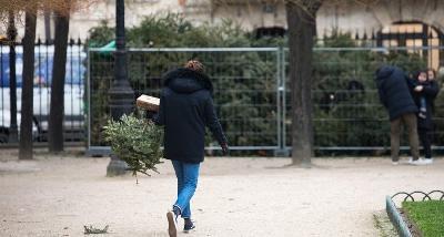 OVE GODINE U PARIZU ĆE SE RECIKLIRATI NAJMANJE 120.000 STARIH BOŽIĆNIH JELKI