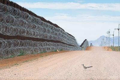 FOTOGRAFIJA PTICE PORED ZIDA IZMEĐU SAD-A I MEKSIKA OSVOJILA NAGRADU